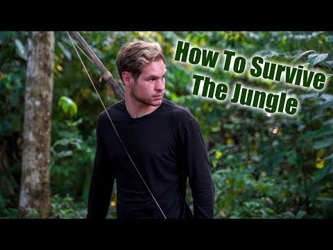 Inside the AMAZON RAINFOREST! - What it's REALLY like in the Jungle (2019) Pt. 2