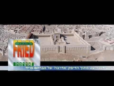 נישט געדאגהעט - אברהם פריד