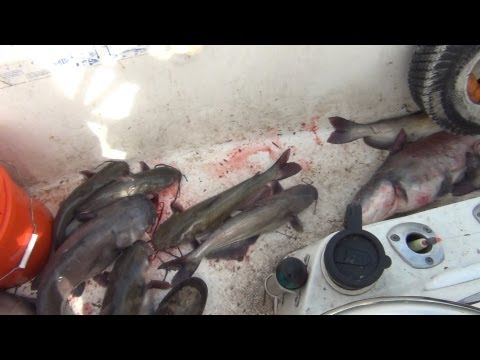 Jug Fishing For Catfish from YouTube · Duration:  1 minutes 2 seconds  · 8,000+ views · uploaded on 7/20/2010 · uploaded by Crappie Chris