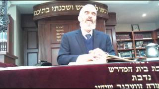 Kollel Yishmach Moshe Presents: Dr. Rabbi Akiva Tatz - 947 Generations of Souls