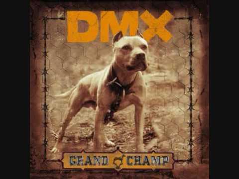 DMX - Fuck Y'all mp3