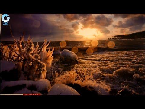 В Новосибирске открылась фотовыставка Природа Сибири