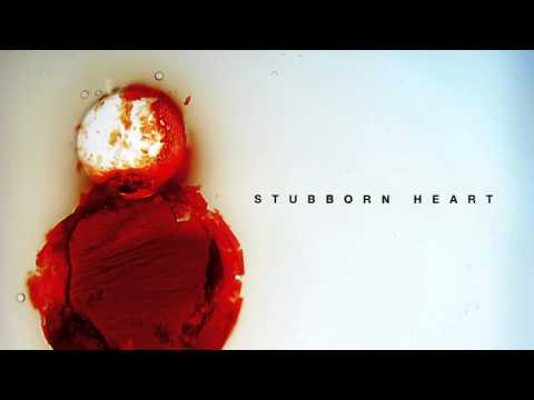 Stubborn Heart - Better Than This (Soft Version)