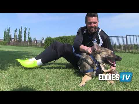 EDDIES TV | Discover how S.C.A.R.S. is helping pets in Alberta