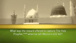 Holy Prophet (SAW)  Quiz 7