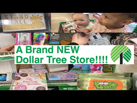 A Brand NEW Dollar Tree!!! | Shop with us