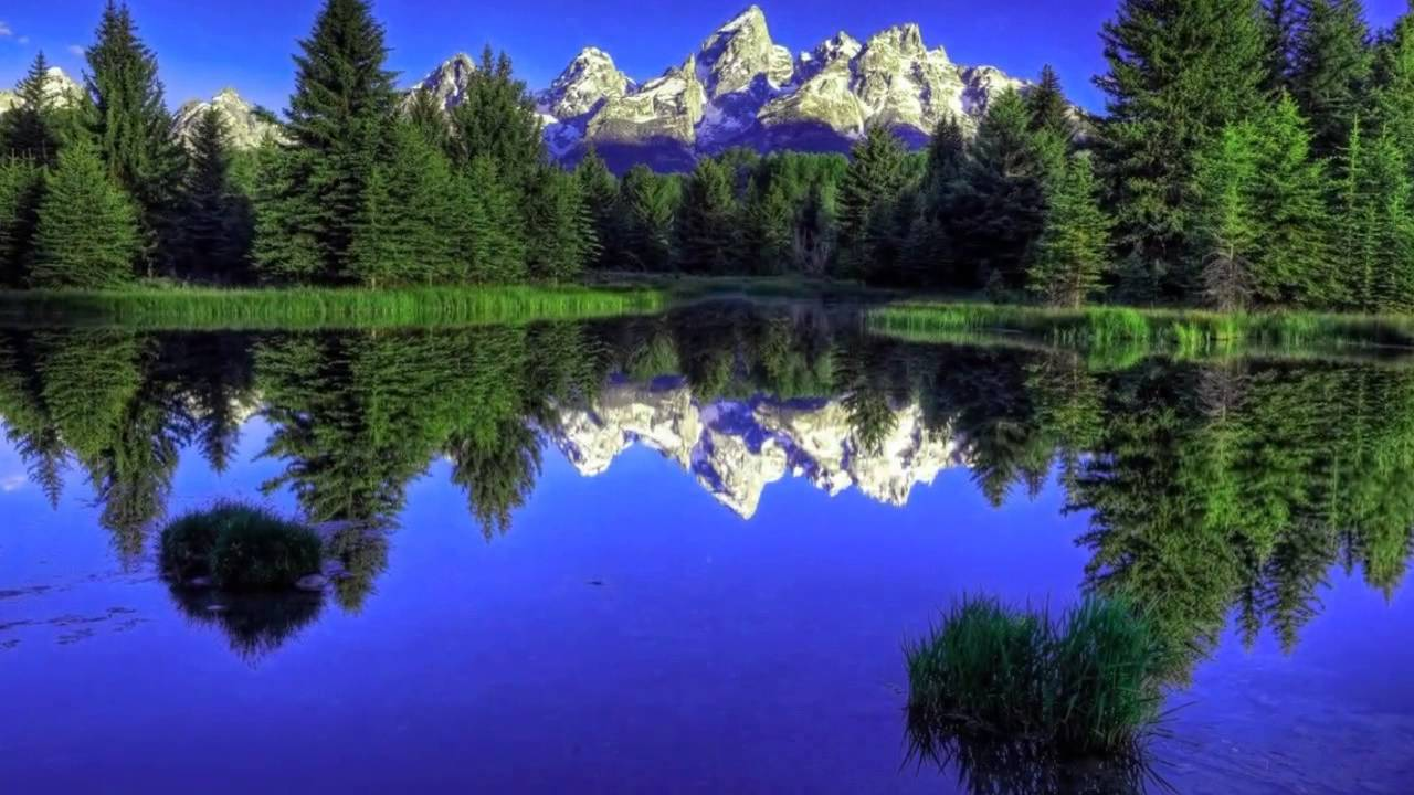beautiful nature scenery 1080p hd - youtube