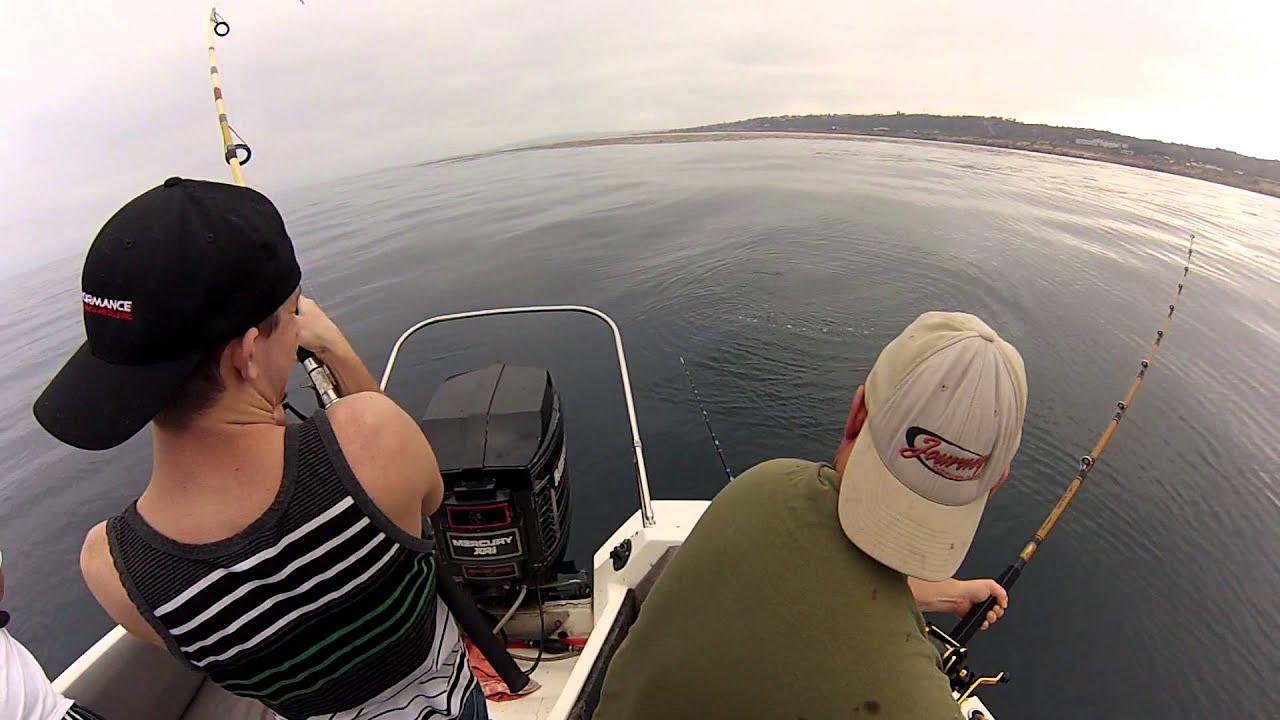 Point loma kelp fishing 8 10 2014 youtube for Point loma sportfishing fish count
