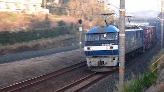 2019/03/20 JR貨物 朝モヤの中 貨物列車5本 1055レに塗装剥がれの桃901号機