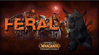 Feral Druid Basic Gameplay Guide WoD 6.1