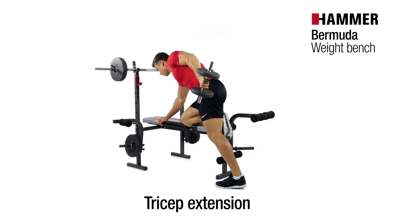 High Quality Weight Bench | Bermuda Incl 25 Kg Weights | HAMMER
