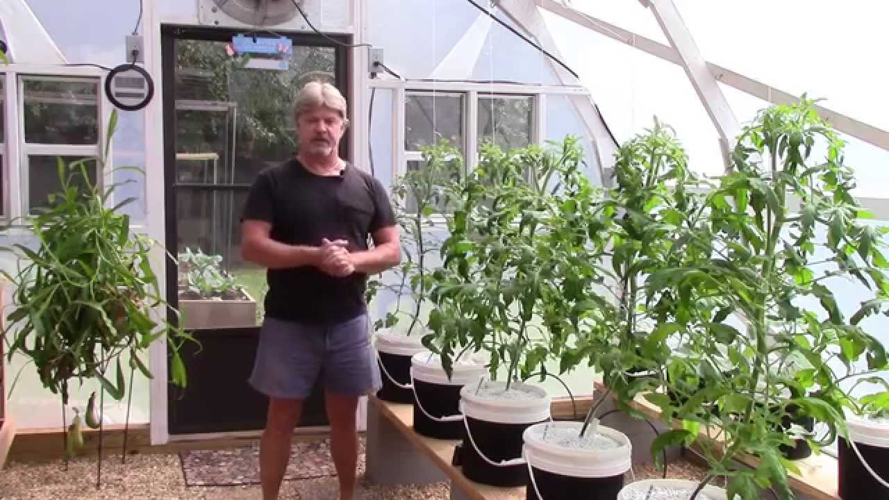 Fall winter greenhouse and raised bed garden update 10 13 14 youtube - Gardening mistakes maintaining garden winter ...