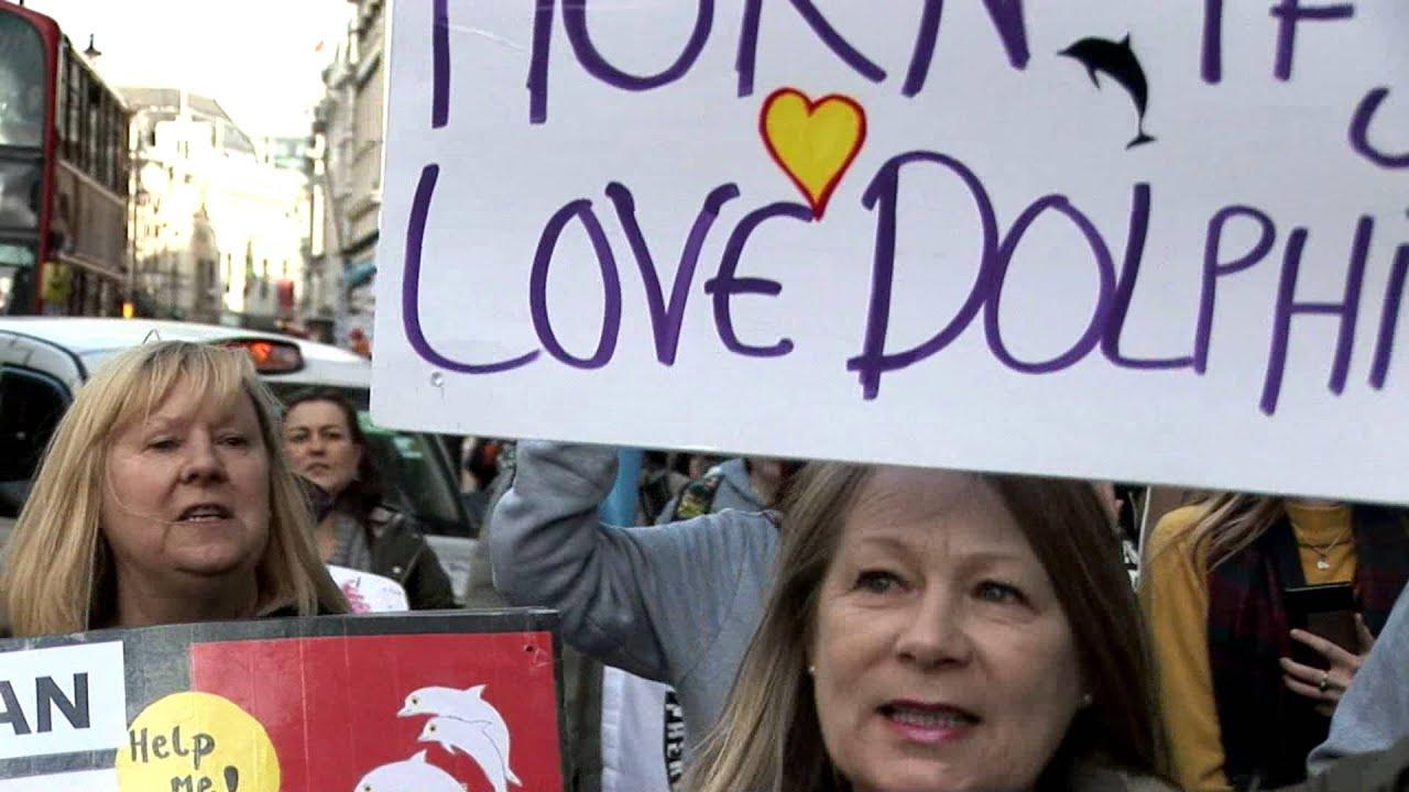 Taiji London anti Dolphin Slaughter Demo 19-02-2016