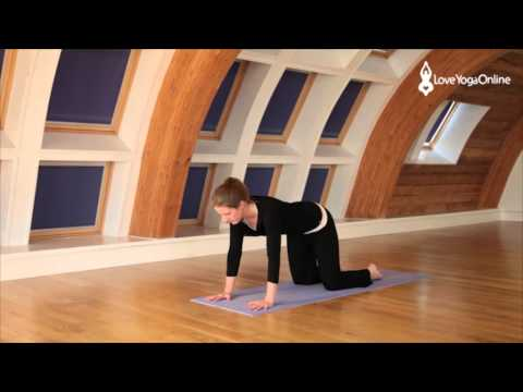 Beginners Yoga Movement and Breath Part 1