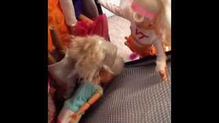 Barbie One Big Happy Family S2: Episode 14: Happy Trip To Alaska Part Three: Bag Casualties