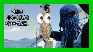 지역문제해결플랫폼+젬디 쭈꾸미 갑오징어 낚시배 항구 소…