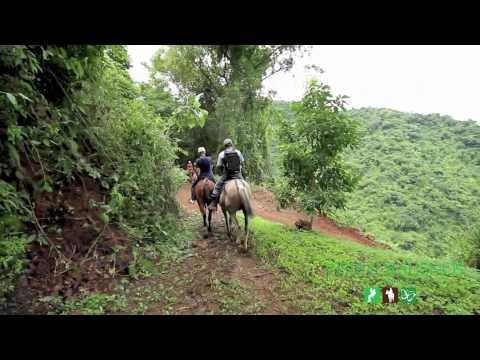 The best Horseback Riding Tour in Jaco Beach and Los Suenos Costa Rica