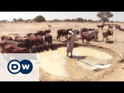 Sudanese farmers in search of water   Global 3000