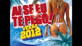 Ai Se Eu Te Pego - Verão 2012 - Includes Sinfonia 2012 (Danubio RMX)