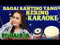 Banyak Diminati Bagai Ranting Yang Kering Karaoke Iis Dahlia Populer