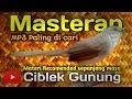 Masteran Ciblek Gunung Paling Di Cari  Mp3 - Mp4 Download