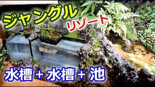 レイアウト埋め込み式水槽完成!