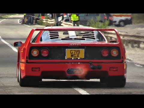 BEST OF Ferrari F40 2.9L Twin Turbo V8 Exhaust Sounds | Start Up, Revs, OnBoard & More!