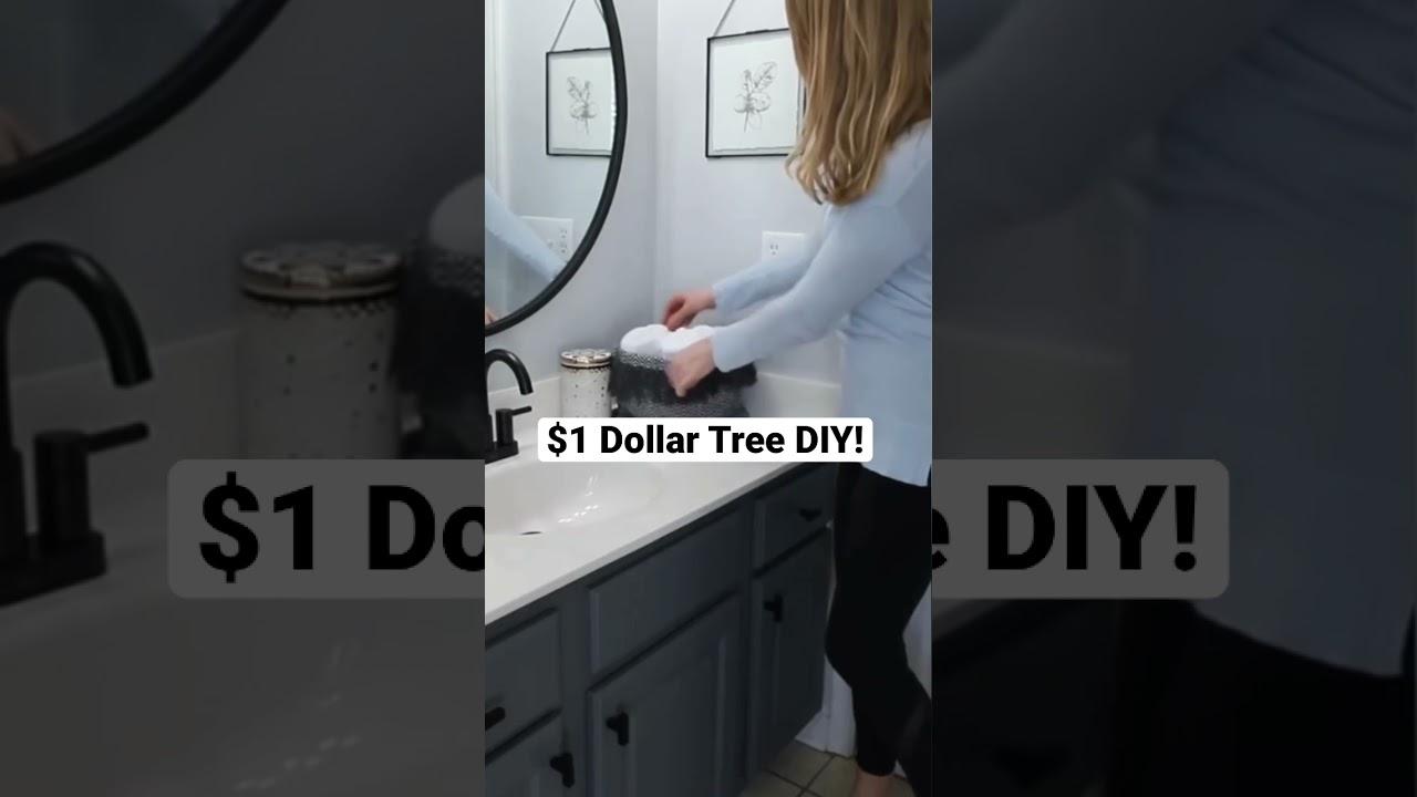 WOW $1 Dollar Tree DIY (one minute organization!) #Shorts