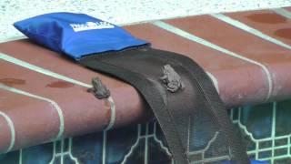 これでプールから上がれるよ!水に落ちた生き物たちの脱出用アイテムを開発してみた