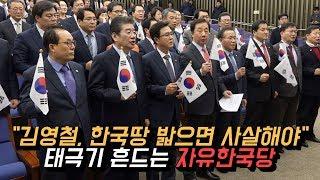 """""""김영철, 한국땅 밟으면 사살해야"""" 태극기 흔드는 자유한국당"""