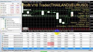forex live trading - free  EA Profit V10 robot 2016