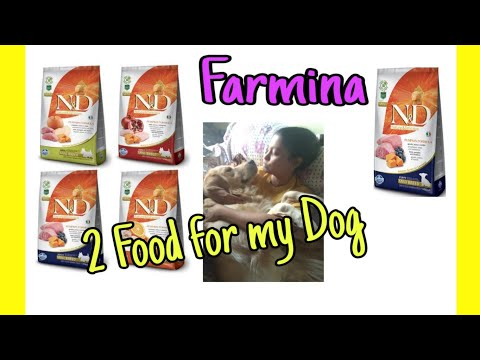 Farmina N&D Dog Food For My Champ // Just Chill My Dog