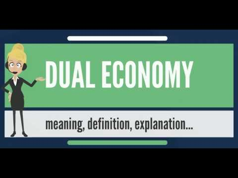 What is DUAL ECONOMY? What does DUAL ECONOMY mean? DUAL ECONOMY meaning, definition & explanation