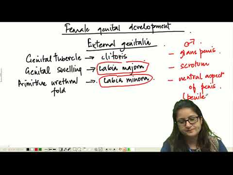 SUBJECT WISE TEST SERIES  - Obstetrics & Gynecology - PART - 5