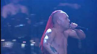The Exploited - Noise Annoys (live)