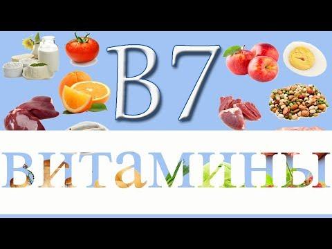 ВИТАМИНЫ В5(пантотеновая кислота), В6(пиридоксин), В7(биотин), В9(фолиевая кислота)