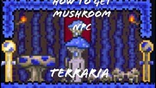 How to get the mushroom NPC (Terraria)