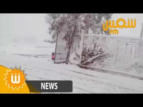 شاهد/ فيديو | تساقط الثلوج في القصرين اليوم