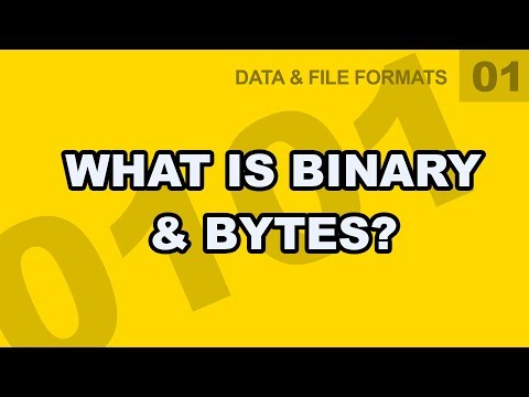 Data File Formats: 01 - What Is Binary & Bytes