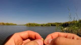 Эхолоты Для Рыбалки Выбор И Эксплуатация - Видео О Рыбалке Братьев Щербаковых Выпуск 34 [Эхолоты Для