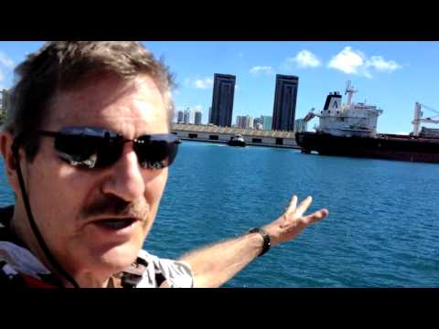 Whales In Honolulu Harbor