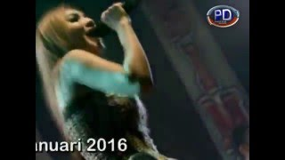 Video Sayang - Nella Kharisma - Lagista Live Kertosono 2016 download MP3, 3GP, MP4, WEBM, AVI, FLV Agustus 2017