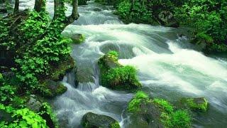 Фото слайд-шоу Природа. Водопады и ручьи. Часть 1.