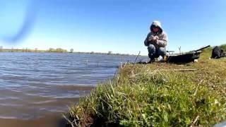 Онлайн ловля карася на фидер в сильный северный ветер на пруду в мае(, 2016-05-17T17:24:23.000Z)
