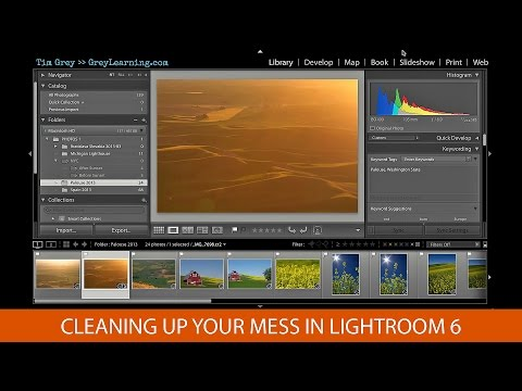 Cleaning Up Your Mess In Lightroom