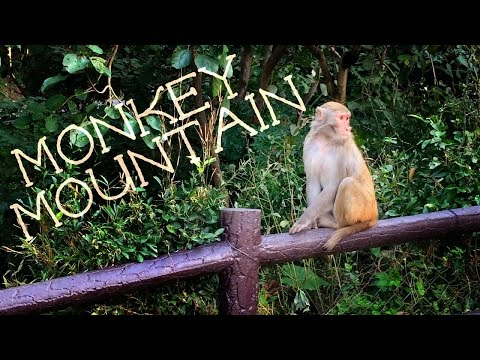 HOI AN MONKEY MOUNTAIN TOUR