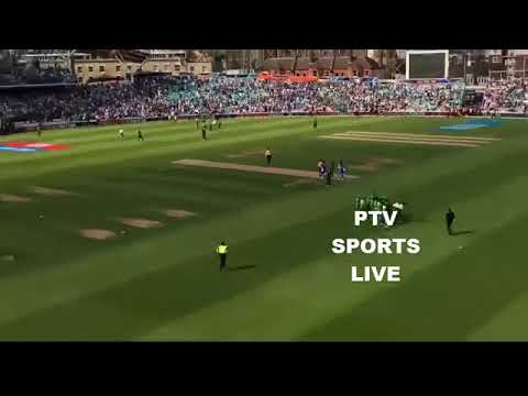 Celebrations after Pakistan Beat India in ICC Champions Trophy Final 2017