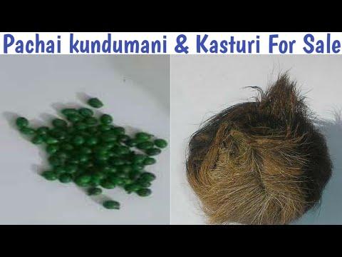 Pachai Kundumani & Kasturi For Sale, | Saller Contact, | Kasturi, | Pachak Kundumani,