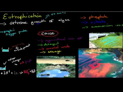 CM.5.3. Eutrophication and heavy metal pollution (HSC chemistry)