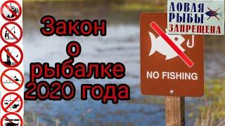 Закон о рыбалке  2020. Штрафы за ловлю рыбы, нормы вылова и борьба с браконьерами  Что нового?